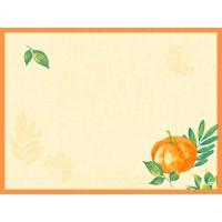 DUNI Tischset Dunicel 30x40 cm Pumpkin Spice