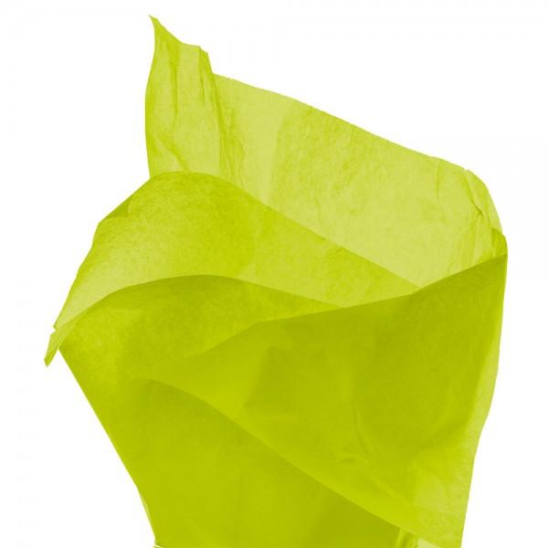 Seidenpapier Bogen 50x76 cm hellgrün